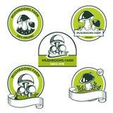 Комплект графического логотипа для гриба edibles естественной еды иллюстрация вектора