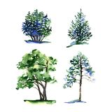 Комплект деревьев акварели разных видов стоковые фотографии rf