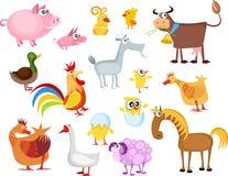 комплект животного Стоковое Изображение