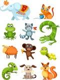комплект животного Стоковые Изображения RF