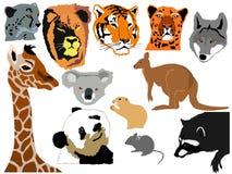 комплект животных смешной Стоковое фото RF