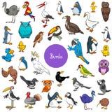 Комплект животных характеров птиц шаржа большой иллюстрация вектора