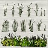 комплект зеленого цвета травы Стоковая Фотография RF