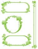 комплект зеленого цвета цветка граници Стоковая Фотография RF