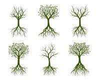 Комплект зеленых деревьев с корнем также вектор иллюстрации притяжки corel Стоковые Фотографии RF