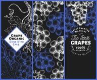 Комплект 3 знамен виноградины Шаблон рамки ягоды виноградины Нарисованная рукой иллюстрация плодоовощ вектора на темной предпосыл стоковое изображение rf