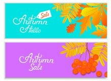 Комплект знамен осени для сезонной продажи с падая листьями и ягодами рябины Надпись руки Бесплатная Иллюстрация