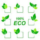 Комплект значка символа Eco Знак экологичности Стоковое Изображение RF