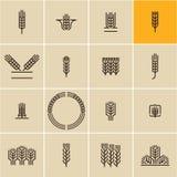 Комплект значка уха пшеницы, уши пшеницы бесплатная иллюстрация