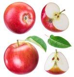 Комплект зрелых красных яблок и кусков яблока Стоковое Фото