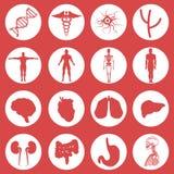 комплект изображения икон конструкции медицинский бесплатная иллюстрация