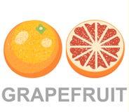Комплект изолированных покрашенных розовых грейпфрутов, половинный, куска, круга и всего сочного плодоовощ на белой предпосылке бесплатная иллюстрация