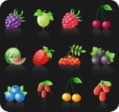 комплект иконы ягод черный Стоковое Изображение