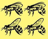 Комплект иллюстраций вектора monochrome с различными пчелами Стоковые Фотографии RF