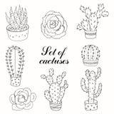 Комплект кактусов и succulents Стоковые Изображения