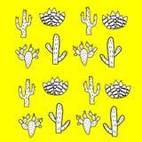 Комплект кактусов Творческая текстура кактуса младенца стоковое фото