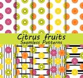 Комплект картины цитрусовых фруктов безшовный Апельсин, киви и лимон Плодоовощи с черными штриховатостями на предпосылке вектор Стоковое фото RF