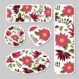 Комплект карточек, плакатов, рогулек с орнаментами цветков иллюстрация штока
