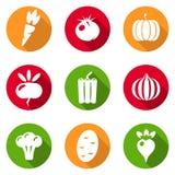 Комплект квартиры значков овощей Стоковые Изображения RF
