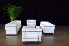 комплект кожи кресла Стоковые Изображения RF