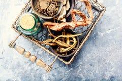 Комплект корней лекарственных растений Стоковое Фото