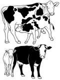 комплект коровы иллюстрация штока