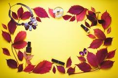 Комплект косметик и аксессуаров на предпосылке осени Стоковое фото RF