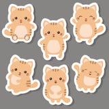 комплект котов милый иллюстрация вектора