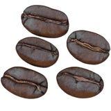 Комплект кофейных зерен, изолированный на белой предпосылке Стоковые Фото