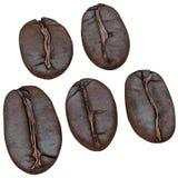 Комплект кофейных зерен, изолированный на белой предпосылке Стоковая Фотография