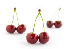 комплект красного цвета вишен Стоковое Изображение RF