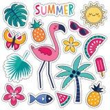 Комплект красочных тропических заплат лета с розовым фламинго Стоковое Фото