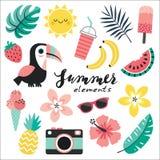 Комплект красочных тропических элементов toucan краснеет розовая мята Стоковое фото RF