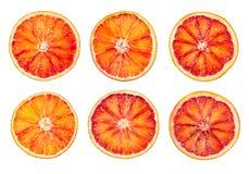 Комплект куска крови красного оранжевого изолированного на белизне Стоковые Фотографии RF