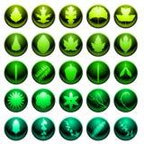 комплект листьев иконы Стоковое Фото