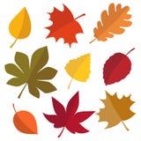 Комплект листьев осени иллюстрация вектора