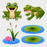 Комплект лягушки шаржа и лилии воды иллюстрация вектора