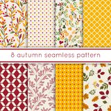 Комплект 8 милых безшовных картин красоты осени с листьями, ягодами, точками польки Стоковое Изображение RF
