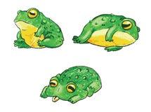 Комплект милых лягушек шаржа Handdrawn вектор Стоковые Изображения
