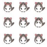 Комплект милых смайликов кота с различными выражениями Стоковая Фотография RF
