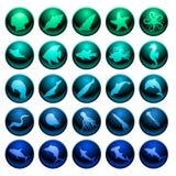 комплект моря жизни иконы иллюстрация вектора