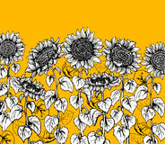 Комплект нарисованной рукой линии эскиза графического солнцецвета винтажной иллюстрация штока