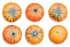 Комплект оранжевых тыкв изолированных на белой предпосылке Стоковое фото RF