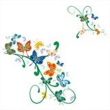 комплект орнамента бабочек угловойой Стоковые Изображения