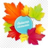 Комплект осени покрасил листья на белой и прозрачной предпосылке иллюстрация штока