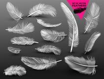 Комплект падая белых пушистых вертеть пер дальше в реалистическом стиле Нарисовано вручную Иллюстрация вектора вектора Изолирован иллюстрация штока