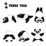 Комплект панд приниматься йогу Стоковое Изображение RF