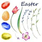Комплект пасхи весны цветет, хворостины, яичка белизна изолированная предпосылкой Стоковые Фото