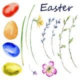 Комплект пасхи весны цветет, хворостины, яичка белизна изолированная предпосылкой Стоковая Фотография