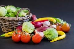Комплект перцев горячего chili, капусты и томатов вишни Перцы красного и зеленого цвета ягодами томата пряно стоковые изображения